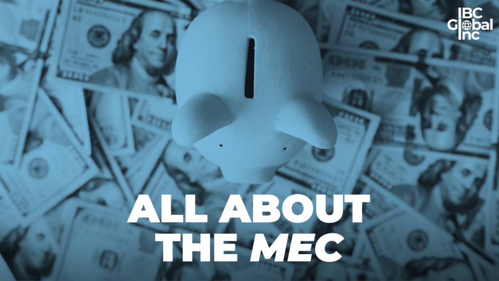 2-All-About-The-MEC